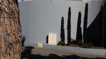 Träd o betong