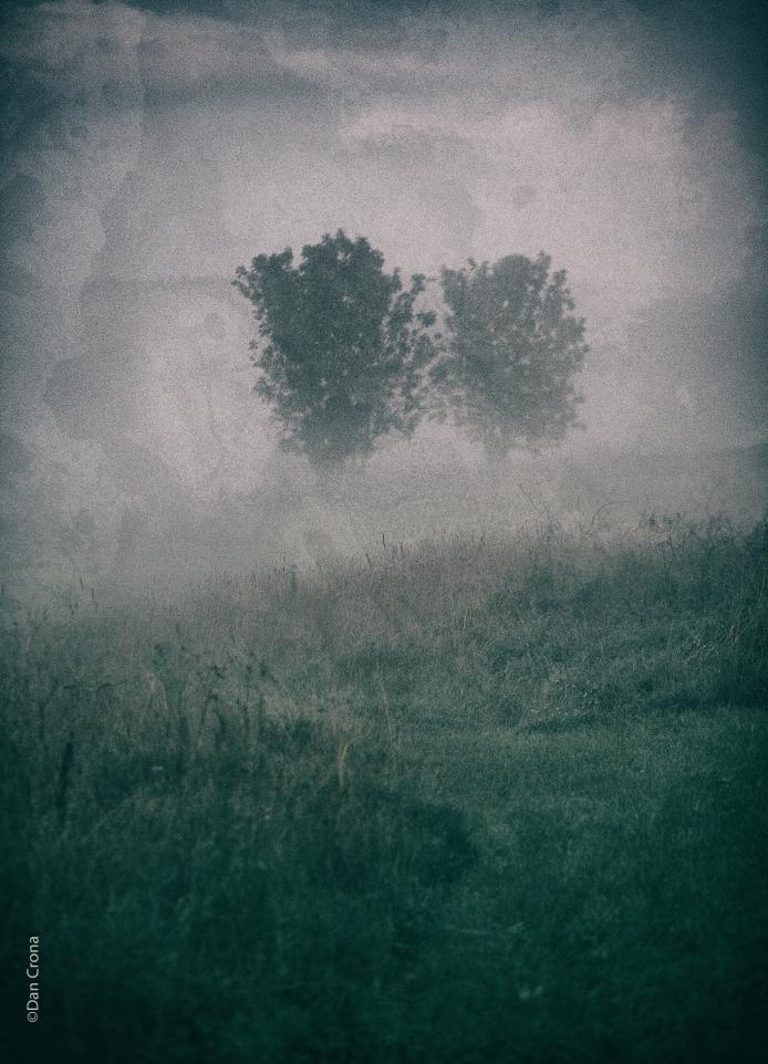 the mist2