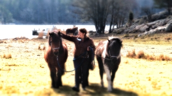 Nicole o hästarna