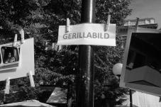 Gerillabilder (21)